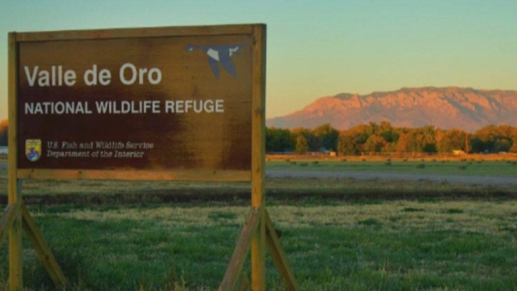 ALMA at Valle De Oro National Wildlife Refuge